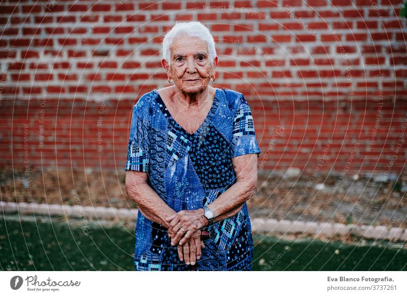 portrait of old lady in her 80s relaxed looking into camera happy smiling joy woman elderly home white hair grey hair mental solitude thoughtful grandmother