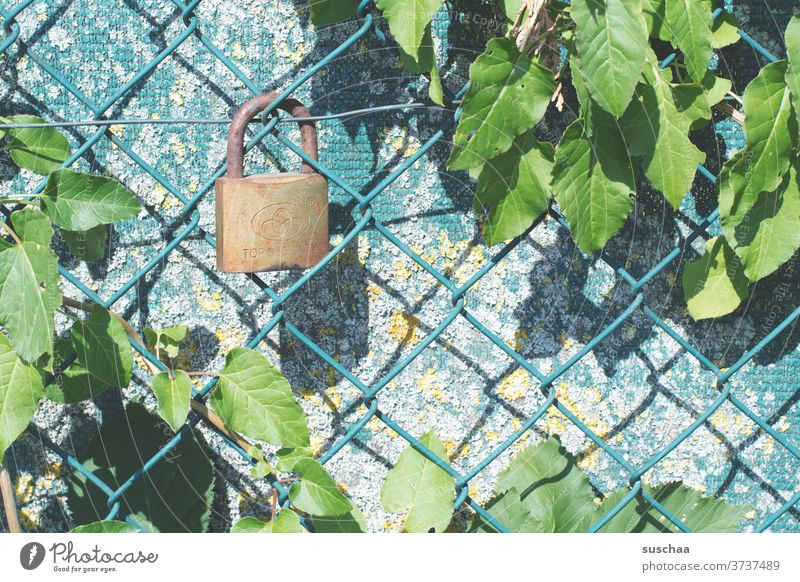 wire mesh fence with lock Fence cordon Wire netting fence Barrier Border Protection Deserted Wire fence Metal Safety locked Lock Padlock completed Screening
