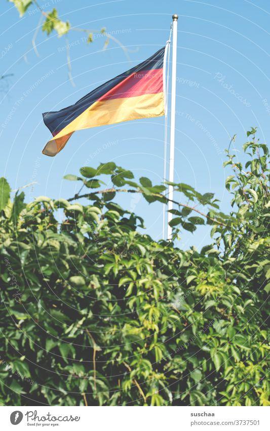germany flag in a shear garden German flag Flag German Flag Flagpole Germany Patriotism Wind Ensign black-red-gold Garden Garden plot shrubby Nationality Sign