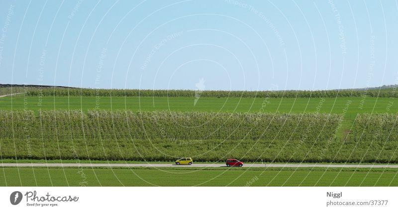 Nature Green Red Yellow Street Car Large Transport Panorama (Format)