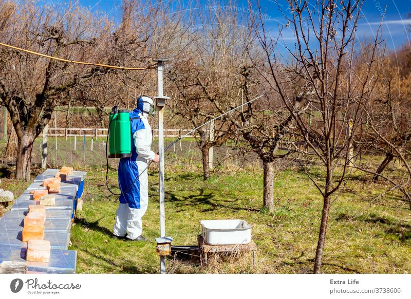 Gardener wearing protective overall sprinkles fruit trees with long sprayer, apiary is in the orchard Aerosol Agricultural Agriculture Apiary Beehive Beekeeping