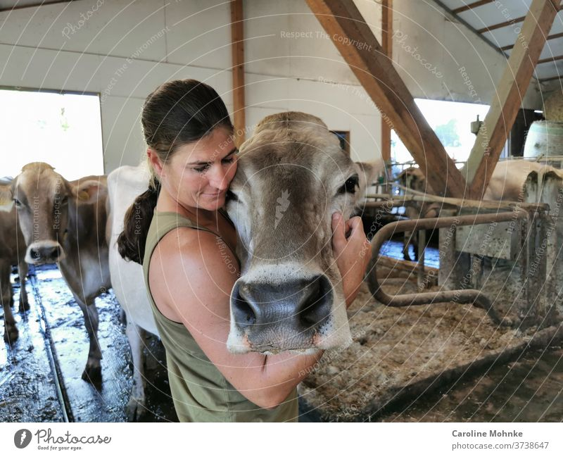 A woman, a veterinarian, hearts a cow chill Cowshed Animal Farm animal Colour photo Exterior shot Day Nature Animal portrait Looking Looking into the camera