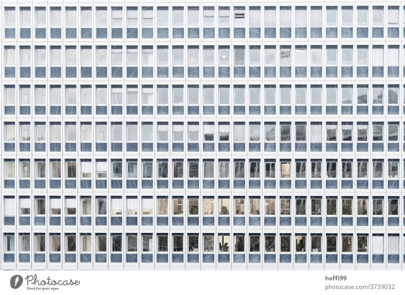 monotone facade with windows Venetian blinds Window Window pane Facade High-rise built Symmetry Abstract Arrangement Modern Architecture Design Bank building