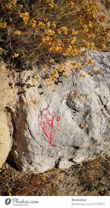 drawn ice Ice Ice-cream cone Drawing sketch Stone Elba Nature Nature reserve nature photography natural-coloured Red Shriveled flowers bleed Rock