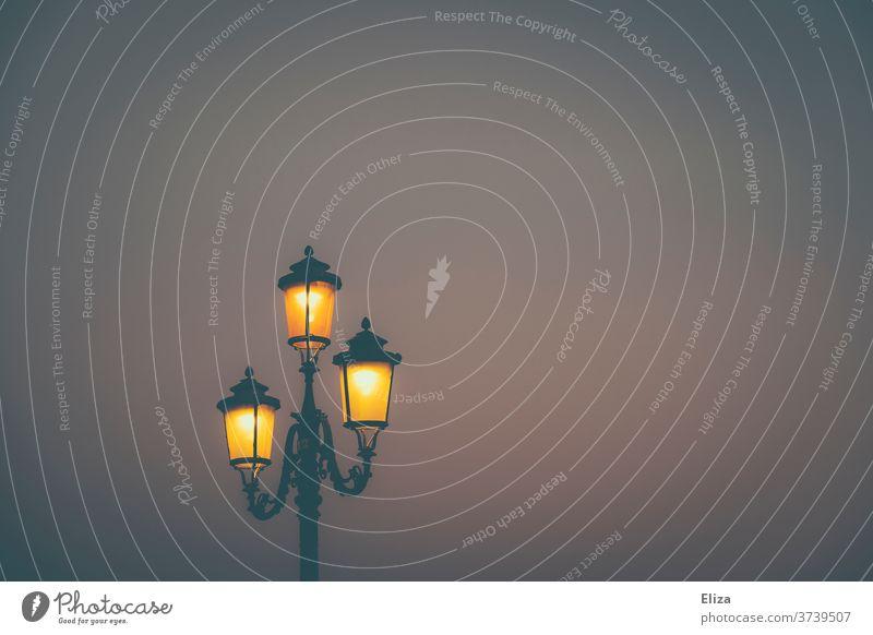 An old-fashioned street lamp shines in the dark Lantern streetlamp at night Evening Light Sky Exterior shot Street lighting atmospheric Lamp Lighting Twilight