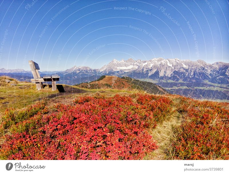 Autumn in the mountains. Bench next to red coloured blueberry leaves, with the backdrop of the Dachstein group Alps Landscape Ennstaler Alps Nature Hiking Trip