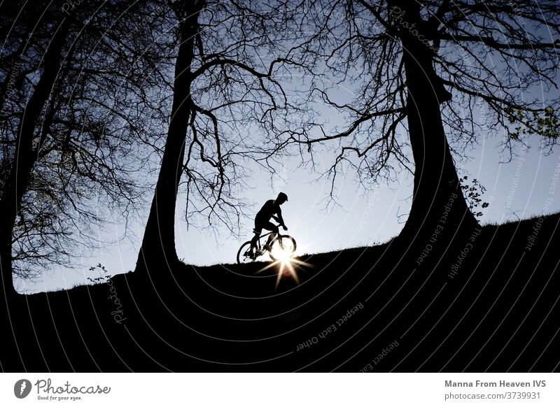 A man biking in the sunset on the top of a hill in the forest. Dark, naked trees and evening blue sky. hobby woods nature winter lifestyle living adventure