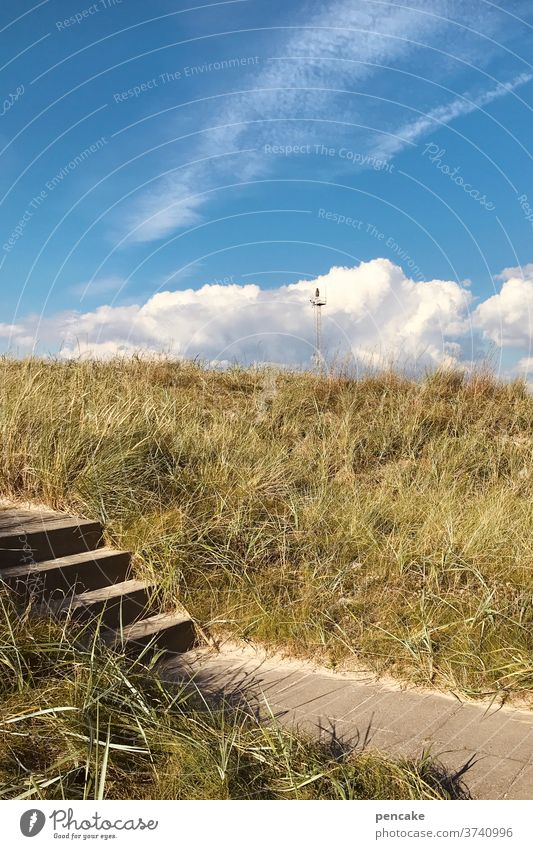 temporary solution Stairs dunes North Sea Coast Beach Sand Vacation & Travel Ocean Nature Relaxation Marram grass North Sea coast Sky Clouds Landscape Denmark