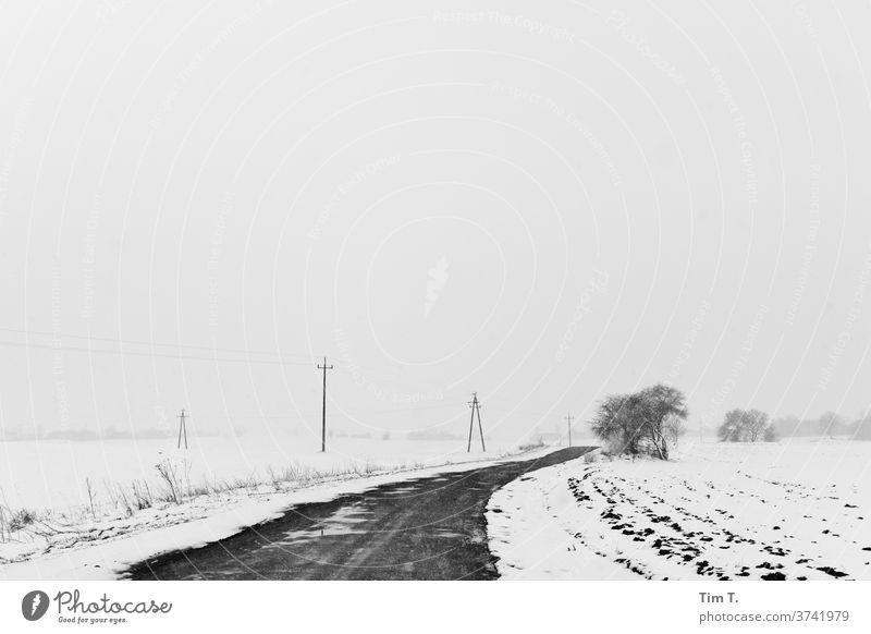 Winter road in Poland poliska Road traffic Snow Exterior shot Deserted Street Traffic infrastructure Frost Day Transport chill Motoring Ice Lanes & trails