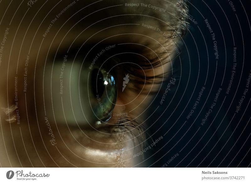 close up of a human eye eyelashes Human being Eyelash Eyes Looking Pupil Iris Eyebrow Face Close-up Macro (Extreme close-up) Skin Vision Blue Detail