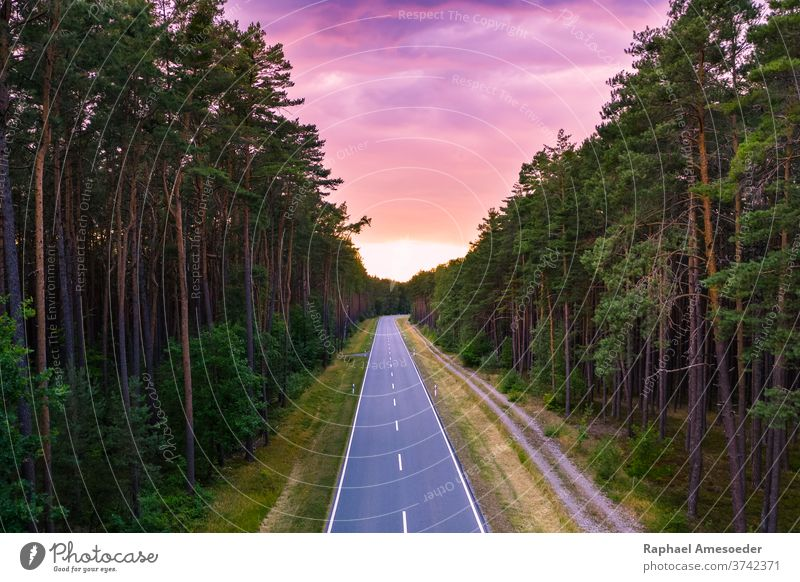 Road through forest under purple sunset sky road vanishing point track nature evening aerial beautiful beauty clouds countryside curve dusk environment foliage