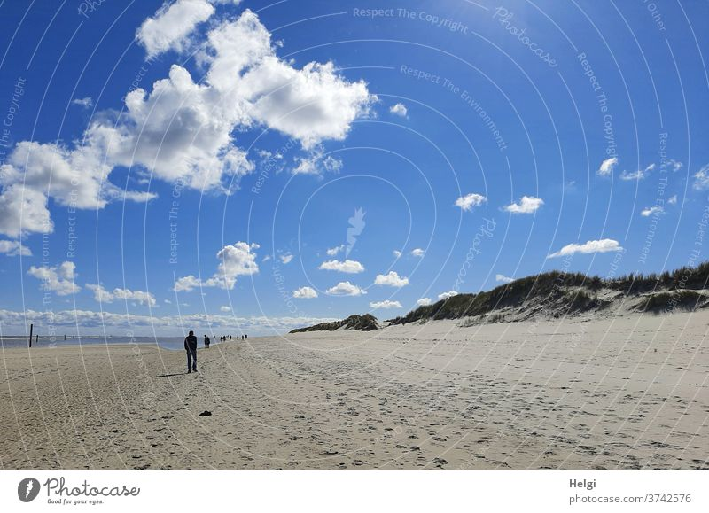infinite space - sandy beach, dunes and silhouettes of people under a blue sky with small clouds, in the background the North Sea Beach Sand wide Island