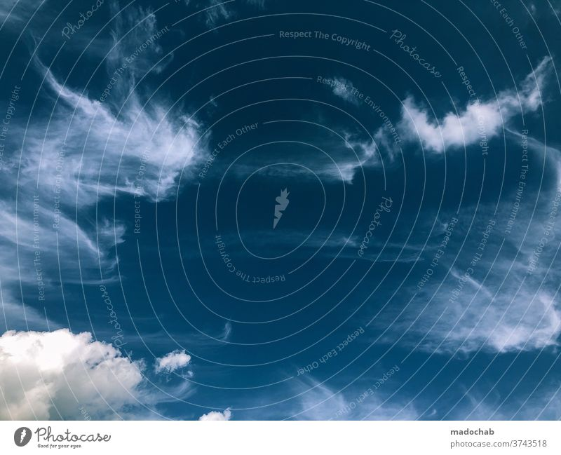 clouds background Sky Clouds Blue Summer Weather cloudy cloud landscape Nature already Outdoors Environment Abstract Vail Fantasy Atmosphere Heaven Bright