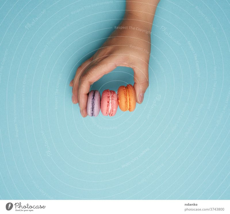 female hand holds three round baked macarons cookies on a blue background caucasian almond assortment bakery baking biscuit cake candy choice circle closeup