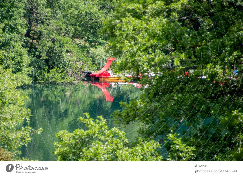 slip Lake Forest Forest lake Slide Red bright red Water slide pleasure Open-air swimming pool Natural outdoor pool bathing fun water features splash around Skid