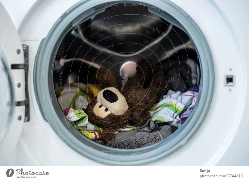 Teddy bear with clothes in a washing machine Washer Washing Dirty laundry garments Washing day Laundry Clean Household Living or residing