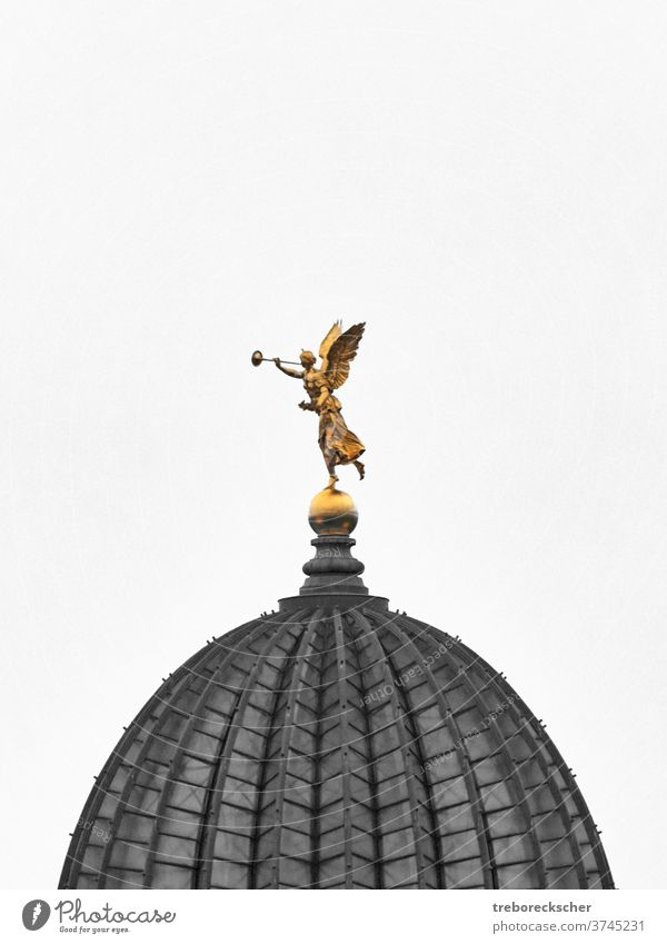 Golden Sculpture Fama or Pheme on the dome of the Saxon art collection in Dresden fama cutout blackwhite colored gold golden pheme copyspace dresden germany