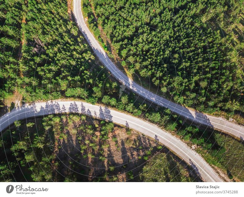 Aerial View Of Mountain Roads Between Pine Forest In Late Summer above aerial asphalt background botany branch colorful country earth eco ecology environment