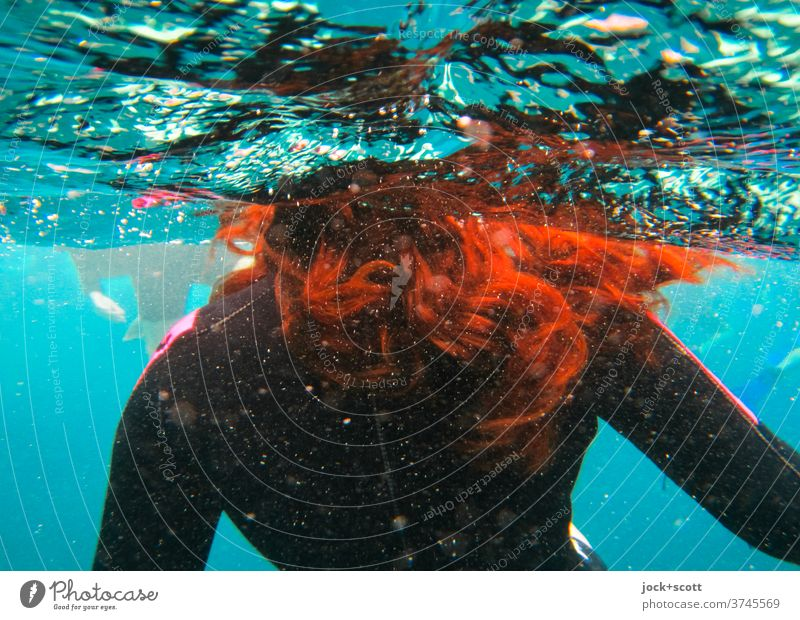 with red hair in blue water Swimming & Bathing diving suit Surface of water Pacific Ocean Underwater photo Ruffled Long-haired Red-haired Wetsuit