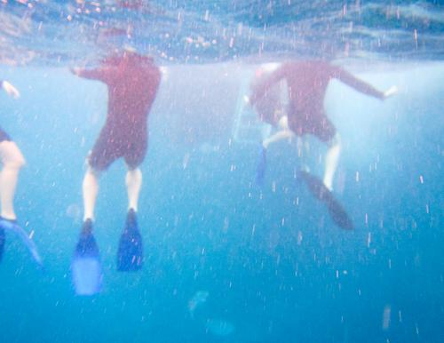 swimming in the big blue Underwater photo Snorkeler Pacific Ocean Warmth Blue Vacation & Travel Posture Blur Human being Movement Surface of water Trip