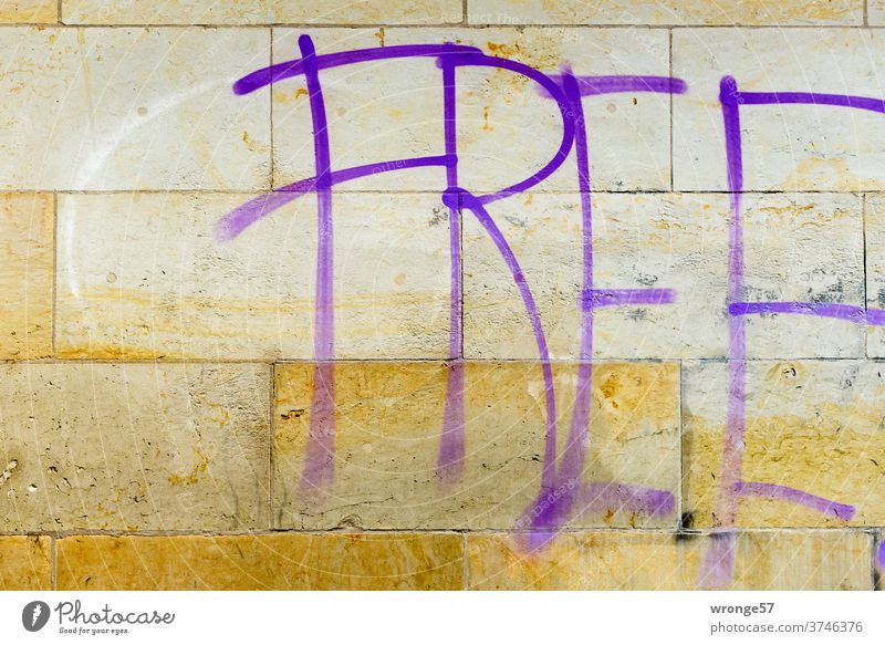 FREE sprayed with purple paint on a wall free Free German Unification Day Purple colour Graffito Spray Exterior shot Colour photo Wall (barrier) Wall (building)