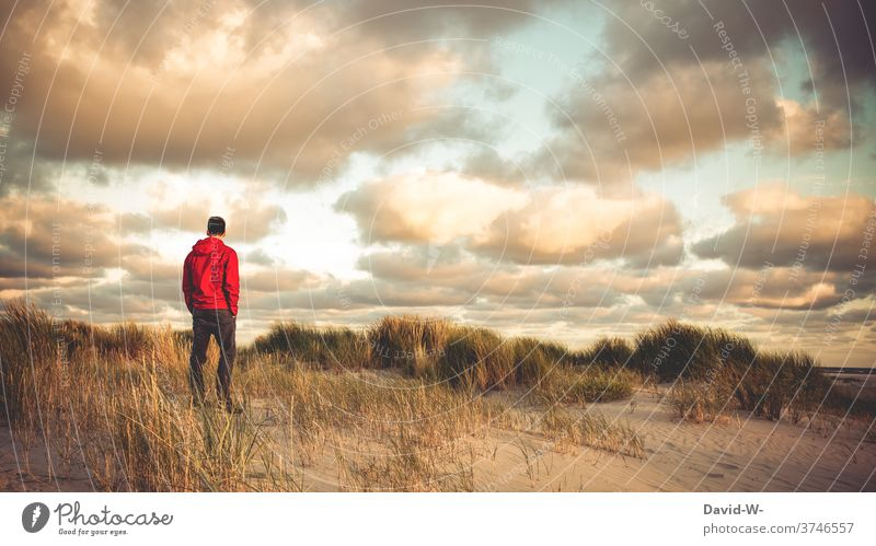 Man stands in the dunes at sunset by the sea tranquillity Holidaymakers Vacation & Travel Relaxation Ocean gap Marram grass Beach Lonely
