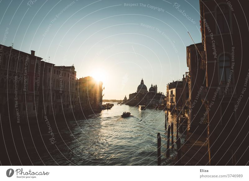Good morning Venice - View of the Grand Canal in the morning light Italy ponte dell'Accademia Canal Grande Back-light Sunlight Dawn Tourist Attraction