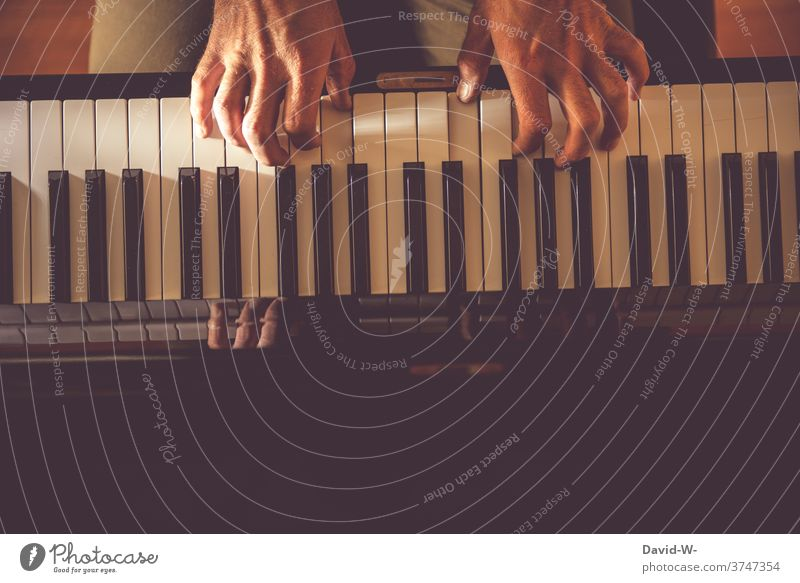 dexterity on the piano | dynamic Play piano Musician Culture Musical instrument Make music practice Artist Sound hands Piano keyboard Virtuoso