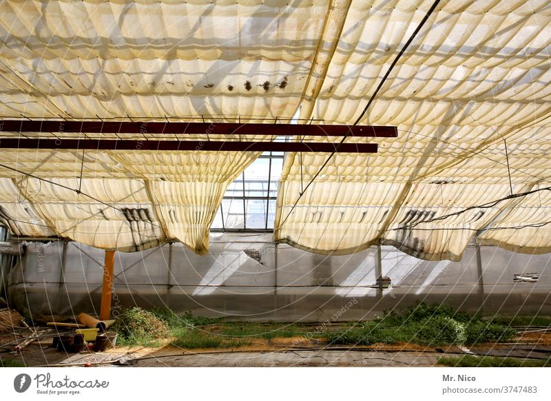 vacant greenhouse Greenhouse built Covers (Construction) tarpaulin Market garden Decline sun protection Glass roof Botanical gardens rearing Botany