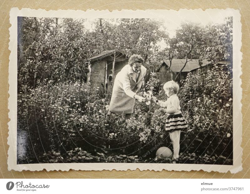 Memories of the 1960s - a black and white photo print with a deckle edge lies on beige paper and shows a little girl with her mother in a flower garden with an arbour