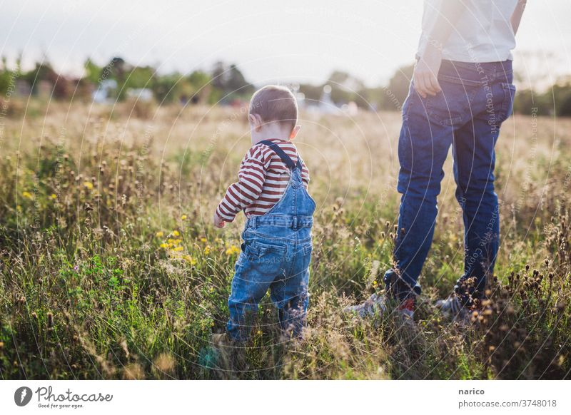 Father and son standing on a meadow at sunset Toddler Son Sunlight Sunset Meadow Overalls Family & Relations Man Child Exterior shot Colour photo Together