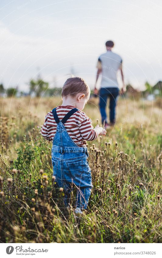 Little boy walking across meadow, father in the background Toddler Boy (child) Child Exterior shot Infancy Colour photo 1 - 3 years Nature Overalls Life