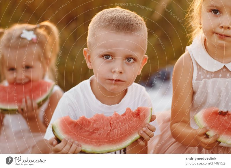 happy kids eating watermelon in summer at sunset in the field. summer picnic. happy childhood. selective focus. casual evening fresh countryside blanket sitting