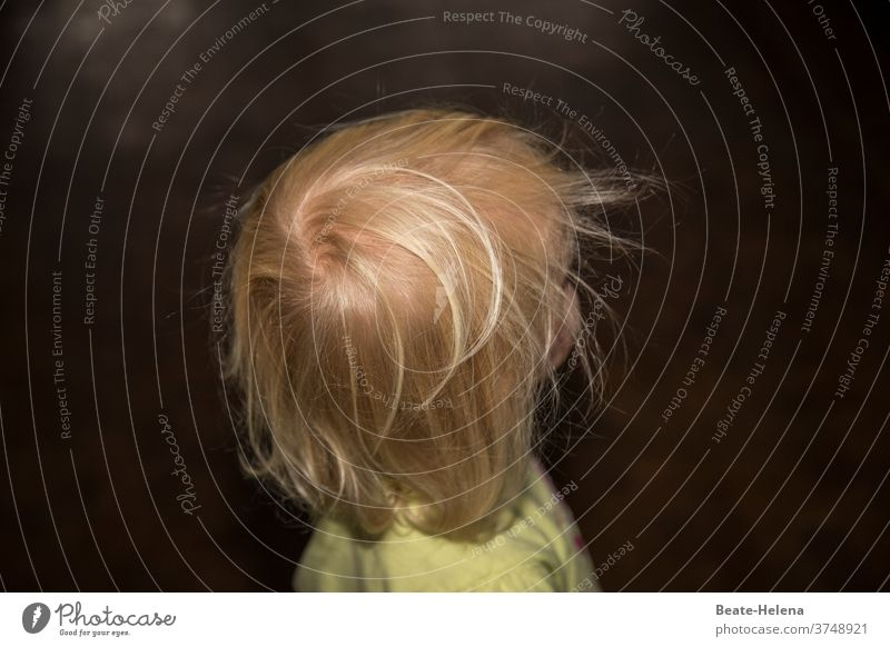 Whirlwind: tousled toddler hair Toddler Head Disheveled whirlwind spirited Wild frisky Blonde Childlike Energized Hair and hairstyles Human being Feminine Girl