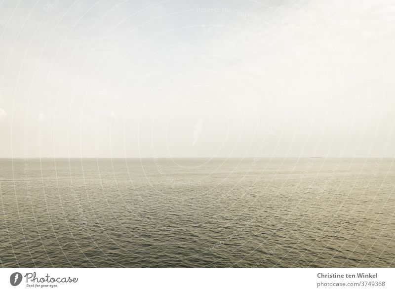 View of the North Sea in cloudy weather and diffuse light Dreary Weather Water Waves Mud flats Ocean Coast Horizon Vacation & Travel Autumnal weather September