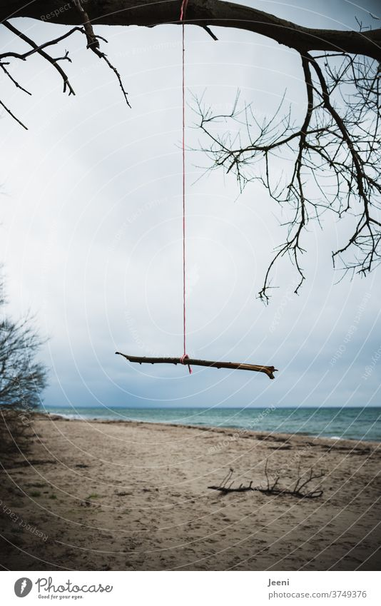 Branch hanging lonely on a red rope on the Baltic Sea beach Rain Winter Rope Ocean Beach Grief sad Cold rainy Gale Storm Autumn To go for a walk Wind windy Blue