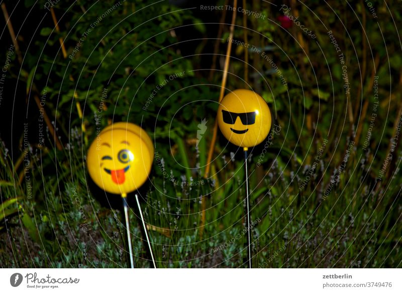 Smileys in real life Face portrait two Couple Lamp light Garden Grass Hedge Neighbor neighbourhood Evening Night at night lightning bolt flash