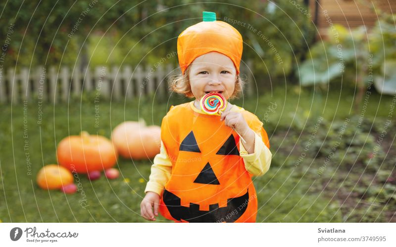 Cute girl in a pumpkin costume has a colorful Lollipop on a stick. The Concept Of Halloween. Holiday, gift, postcard. Space for text halloween autumn playing