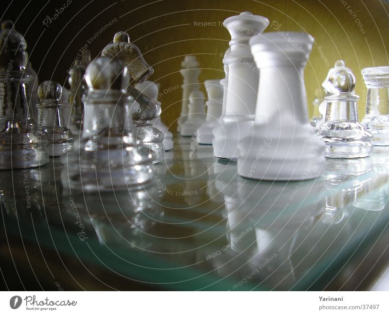 Play of light Dark Reflection Leisure and hobbies Chessboard Glass Bright Shadow Chess piece