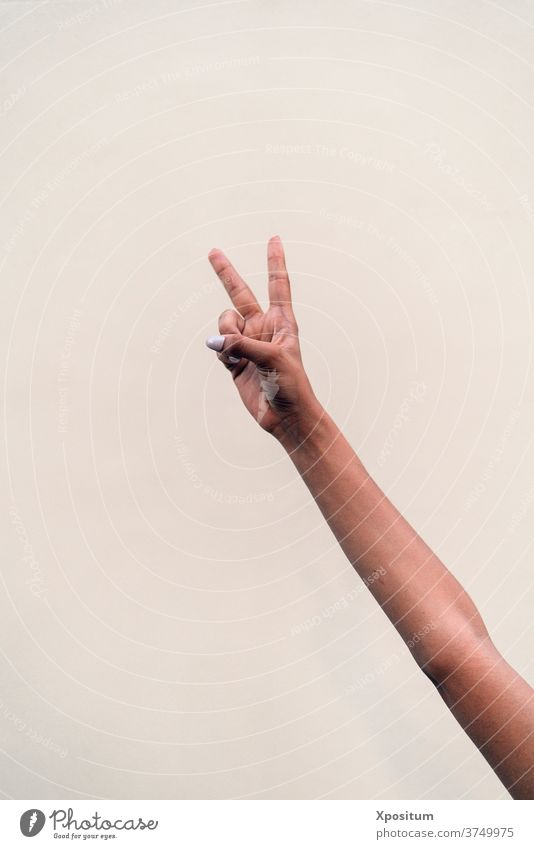 Closeup V Sign fingers white background faceless anonymous arm copyspace v sign hand gesture person one symbol closeup show girl modern expression isolated