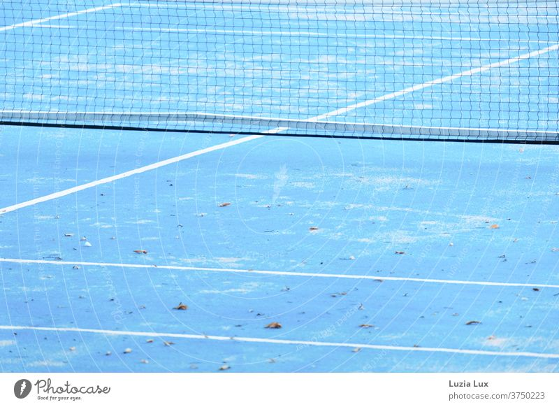 Tennis blue white, autumnal Tennis court Blue White blue-white Autumn Herbtlaub Autumnal Sports Playing Line Leisure and hobbies Exterior shot Colour photo