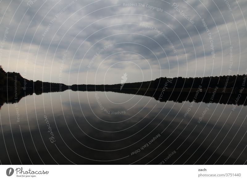 Grey rests the lake Rafts Raft on the lake Lake Water Twilight Summer Reflection Boating trip boat Clouds Lakeside Sky Nature Landscape Light Calm Relaxation
