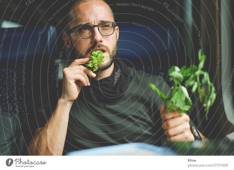A man thoughtfully eats his celery on the train. He likes greenery and healthy food. Healthy Eating Celery celery stalks green stuff Vegan diet Vegetarian diet