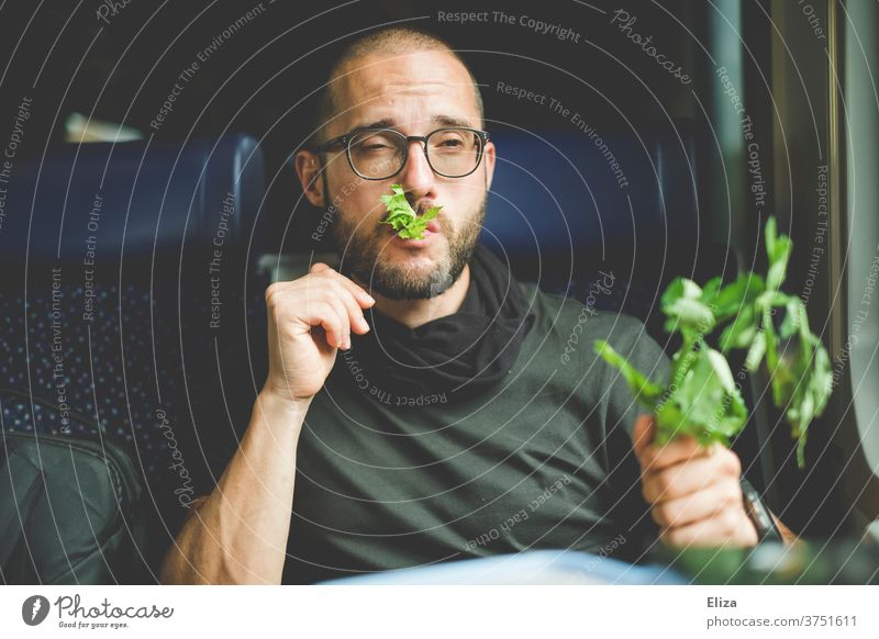A man eats his celery with relish on the train. He likes greenery and healthy food. Healthy Eating Celery celery stalks green stuff Vegan diet Vegetarian diet