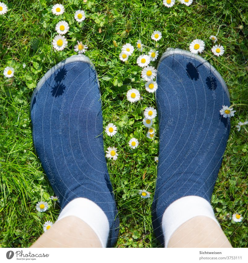 walking barefoot - everywhere Nature Exterior shot Colour photo flowers feet in the sun