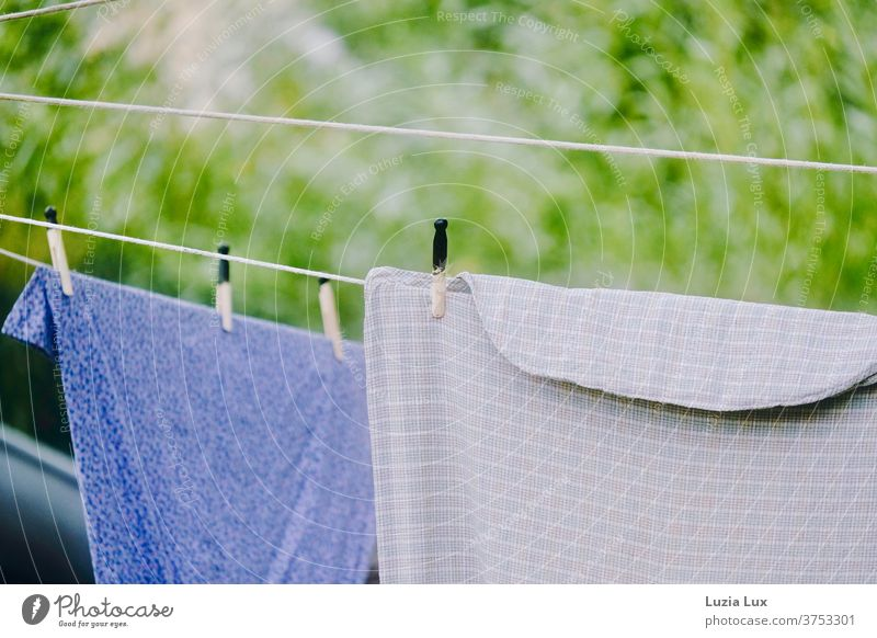 Old-fashioned laundry on the line, in front of light green and in the sunshine Laundry Clothesline Clothes peg Summer Sunlight Dry Washing Exterior shot hang