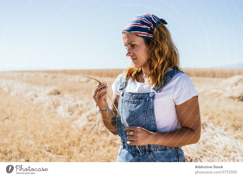 Calm woman standing in wheat field spikelet agriculture relax enjoy season golden sunlight female village countryside rural nature harvest rustic natural
