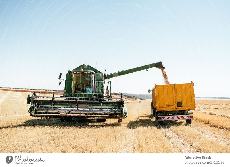 Agricultural machinery in wheat field agriculture combine collect harvest grain trailer farm rural countryside organic summer plant fresh plantation environment