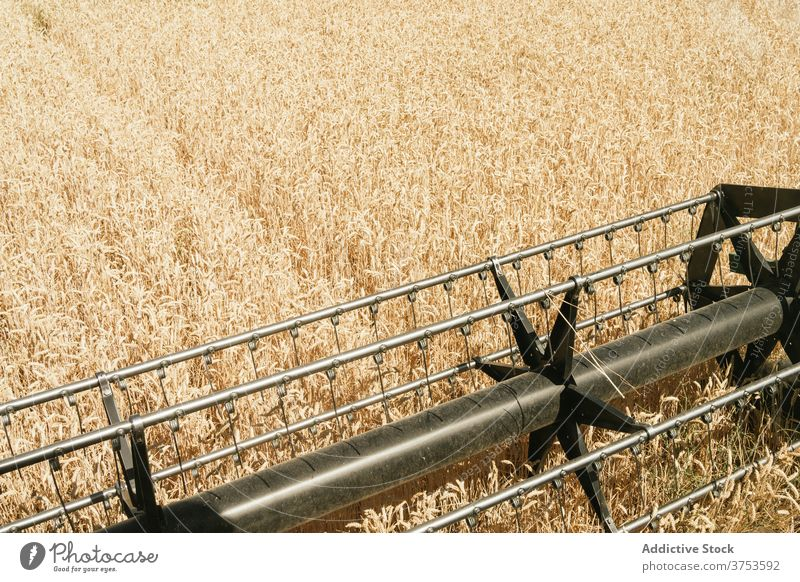 Reel of combine harvester in field reel detail machine wheat agriculture season golden modern metal element countryside meadow daytime farm environment growth