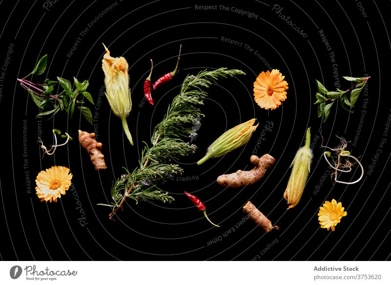 Various fresh greenery and flowers in studio arrangement composition various assorted ripe organic plant healthy nature flora floral bright food blossom natural